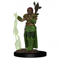 DD5: ICONS: HUMAN FEMALE DRUID