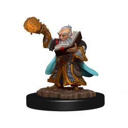 DD5 Icons: Gnome Male Wizard Premium Figure