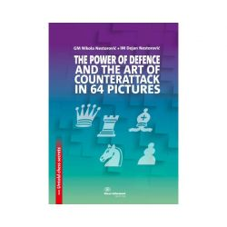 THE POWER OF DEFENCE AND THE ART OF COUNTERATTACK