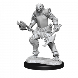 D&D Nolzur's Mini: Dragonborn Female Fighter