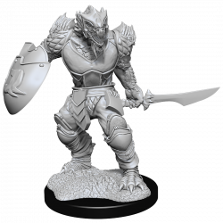 D&D Nolzur's Mini: Dragonborn Male Fighter