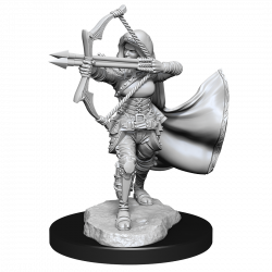D&D Nolzur's Mini: Air Genasi Female