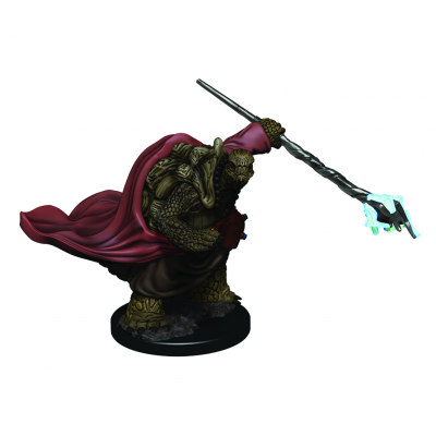 DD5 Icons: Tortle Male Monk Premium Figure