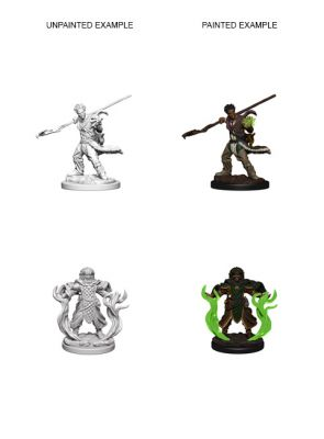 DD5: NOLZUR'S MARVELOUS MINIATURES: HUMAN MALE DRUID