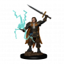 Pathfinder Battles: Premium Painted Figure - Human Cleric Male