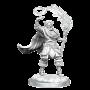 D&D Nolzur's Mini: Elf Male Cleric